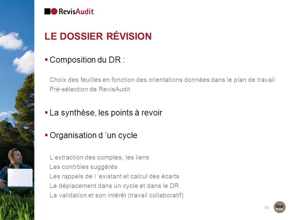 LE DOSSIER RÉVISION 53 Composition du DR : Choix des feuilles en fonction des orientations données dans le plan de travail Pré-sélection de RevisAudit