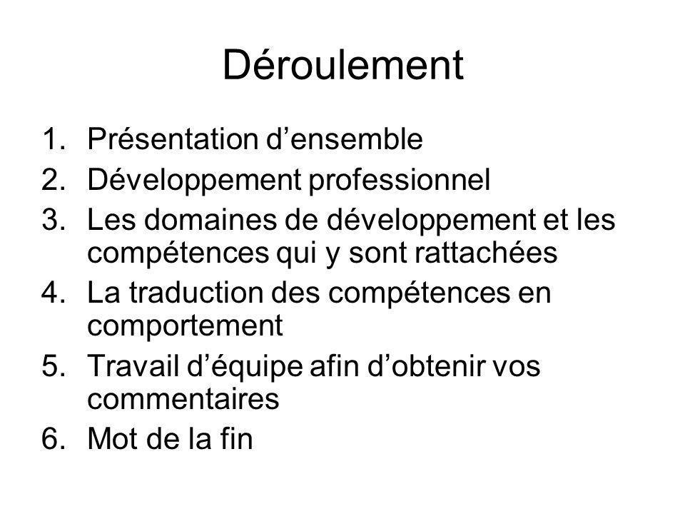 Déroulement 1.Présentation densemble 2.Développement professionnel 3.Les domaines de développement et les compétences qui y sont rattachées 4.La tradu
