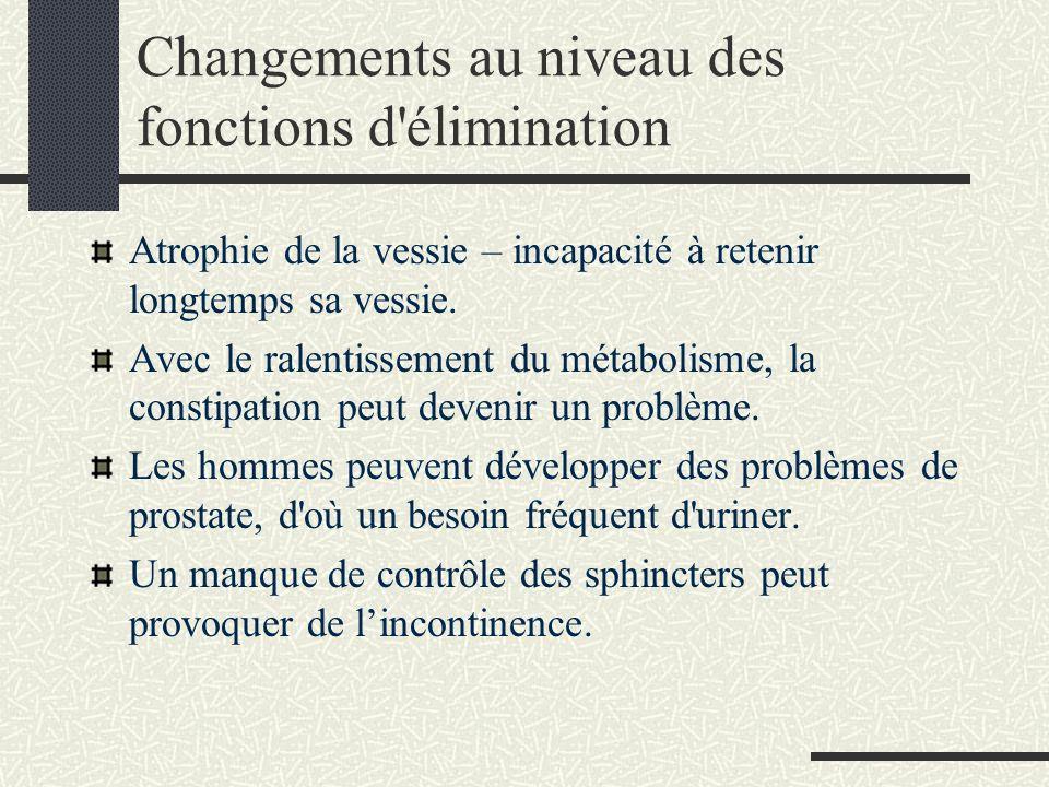 Changements au niveau des fonctions d élimination Atrophie de la vessie – incapacité à retenir longtemps sa vessie.