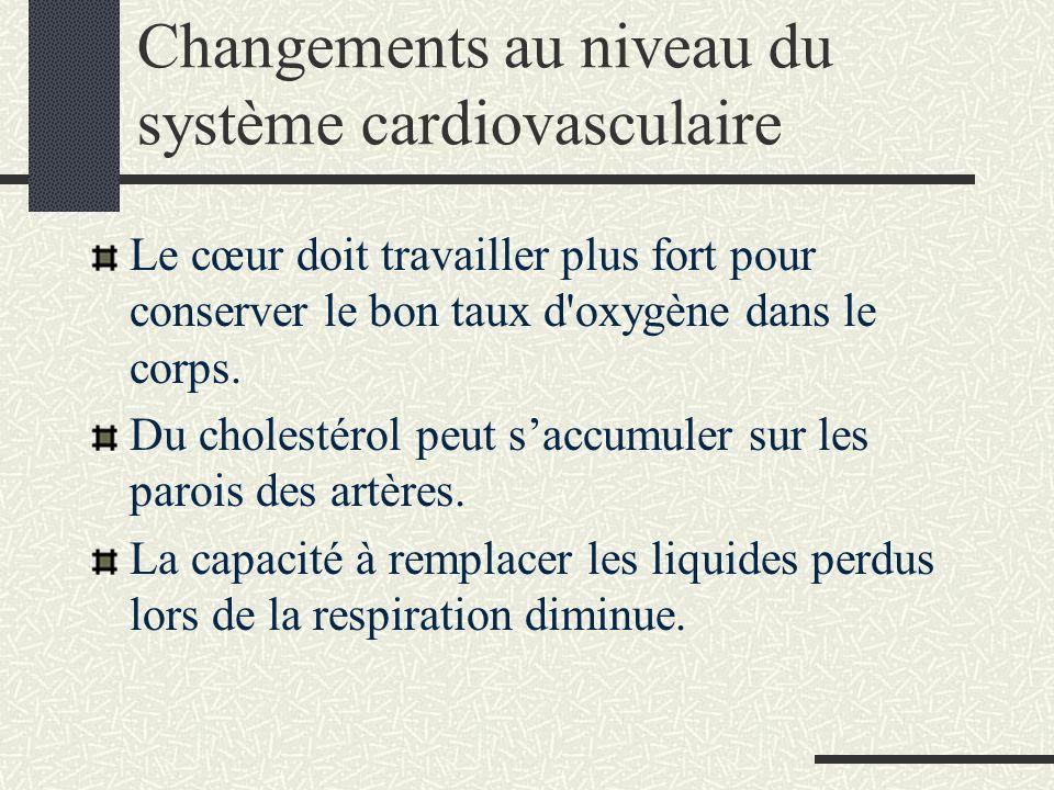 Changements au niveau du système cardiovasculaire Le cœur doit travailler plus fort pour conserver le bon taux d oxygène dans le corps.