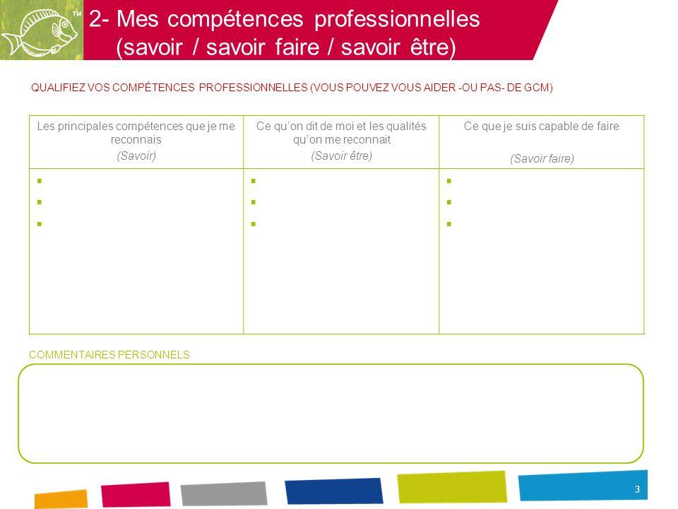 3 2- Mes compétences professionnelles (savoir / savoir faire / savoir être) QUALIFIEZ VOS COMPÉTENCES PROFESSIONNELLES (VOUS POUVEZ VOUS AIDER -OU PAS