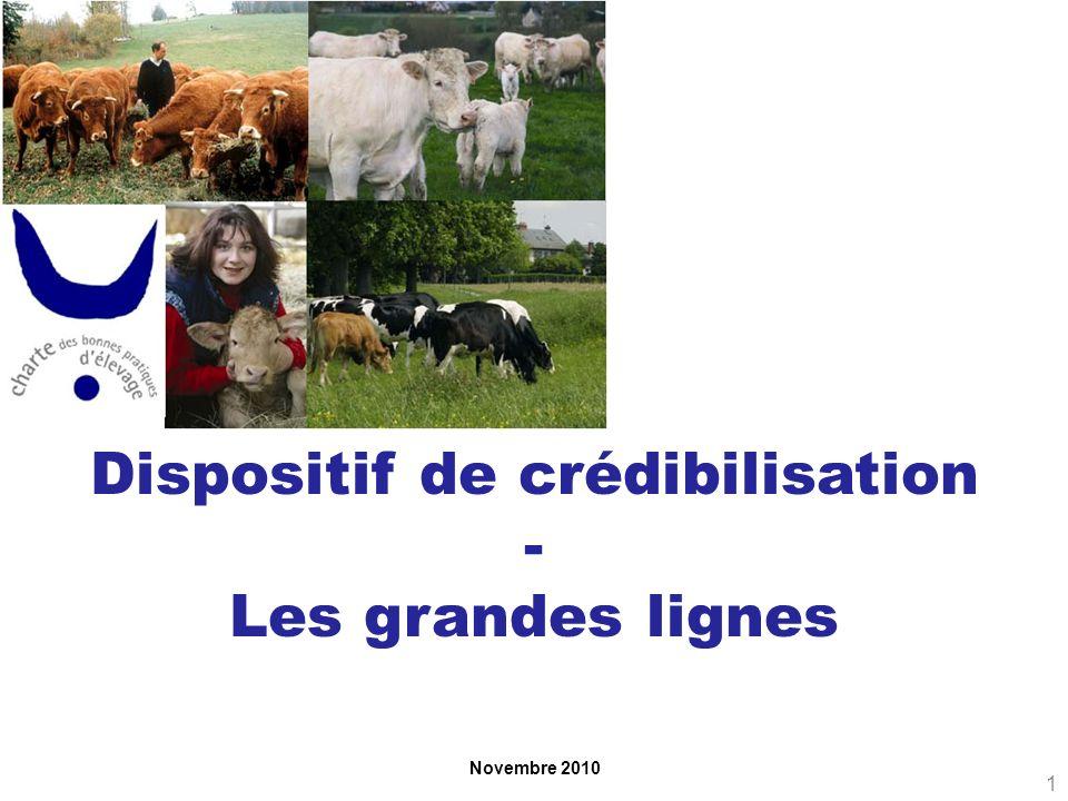 Novembre 2010 Dispositif de crédibilisation - Les grandes lignes 1