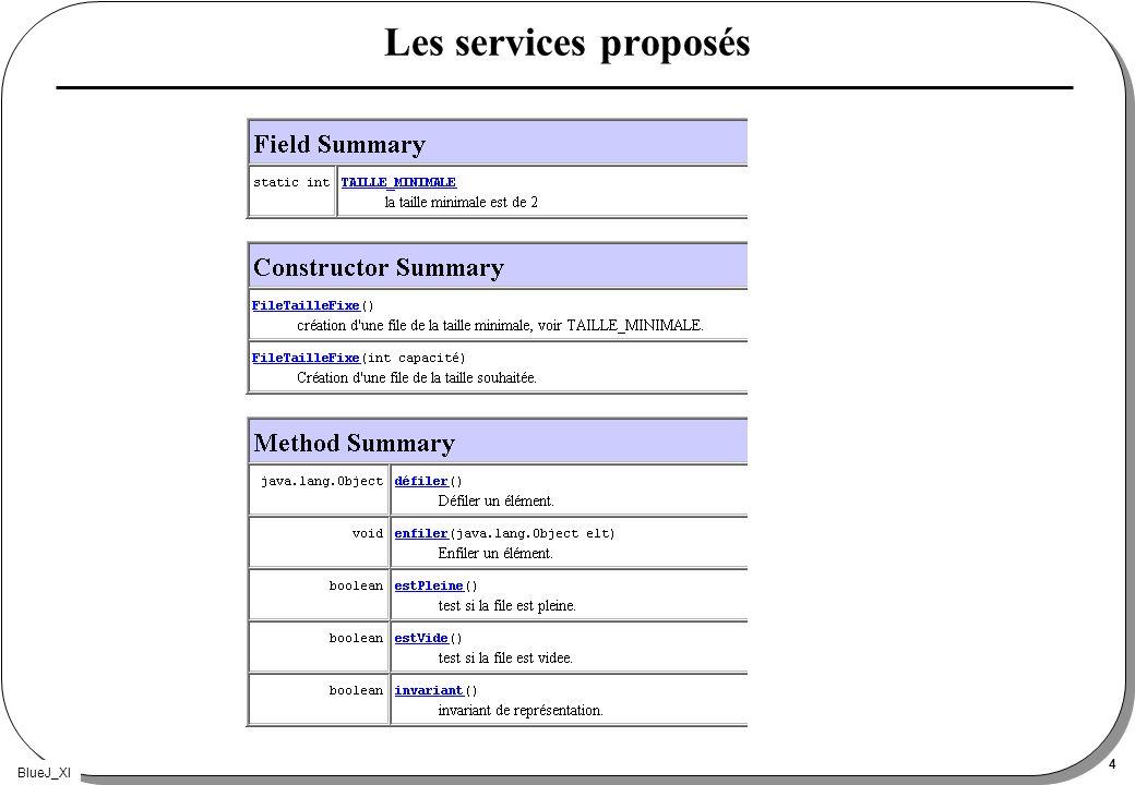 BlueJ_XI 4 Les services proposés