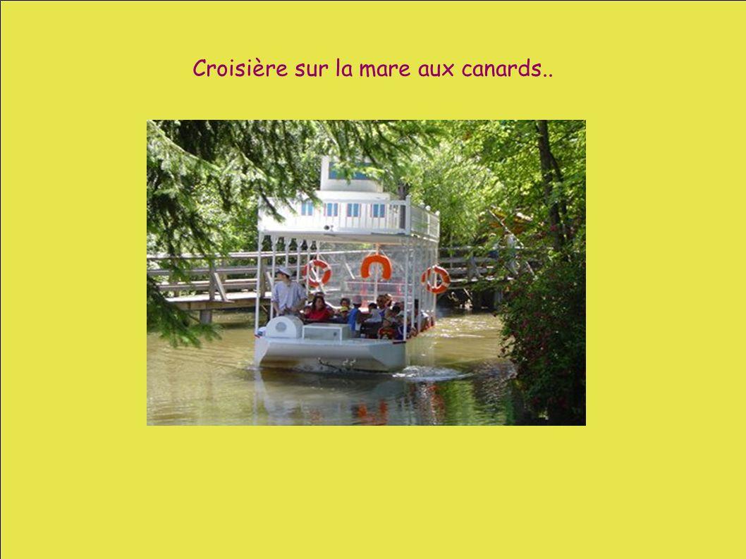 Croisière sur la mare aux canards..