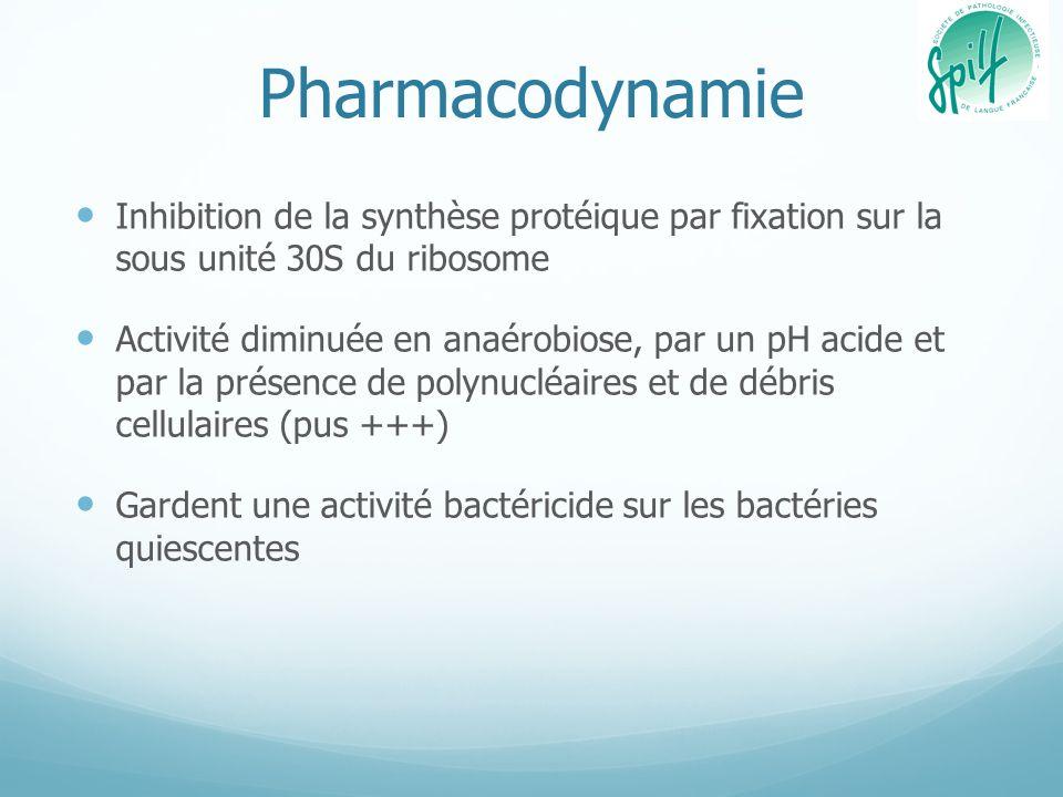 Pharmacodynamie Inhibition de la synthèse protéique par fixation sur la sous unité 30S du ribosome Activité diminuée en anaérobiose, par un pH acide e