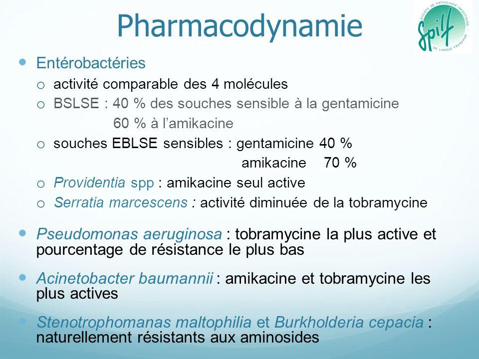 Pharmacodynamie Entérobactéries o activité comparable des 4 molécules o BSLSE : 40 % des souches sensible à la gentamicine 60 % à lamikacine o souches