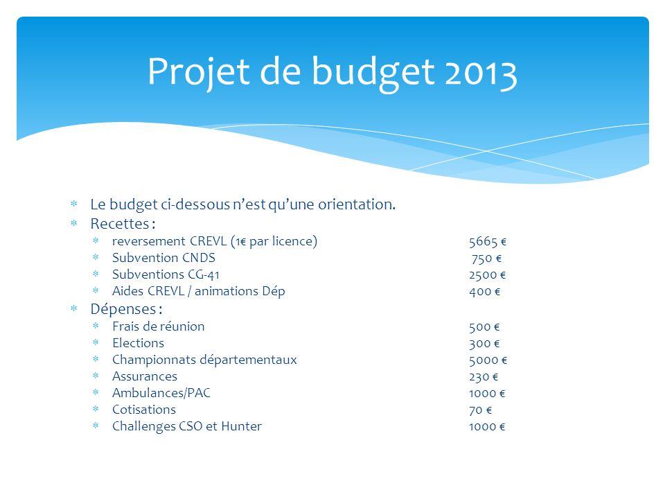 Projet de budget 2013 Le budget ci-dessous nest quune orientation. Recettes : reversement CREVL (1 par licence)5665 Subvention CNDS 750 Subventions CG
