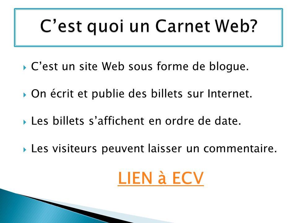 Cest un site Web sous forme de blogue.On écrit et publie des billets sur Internet.