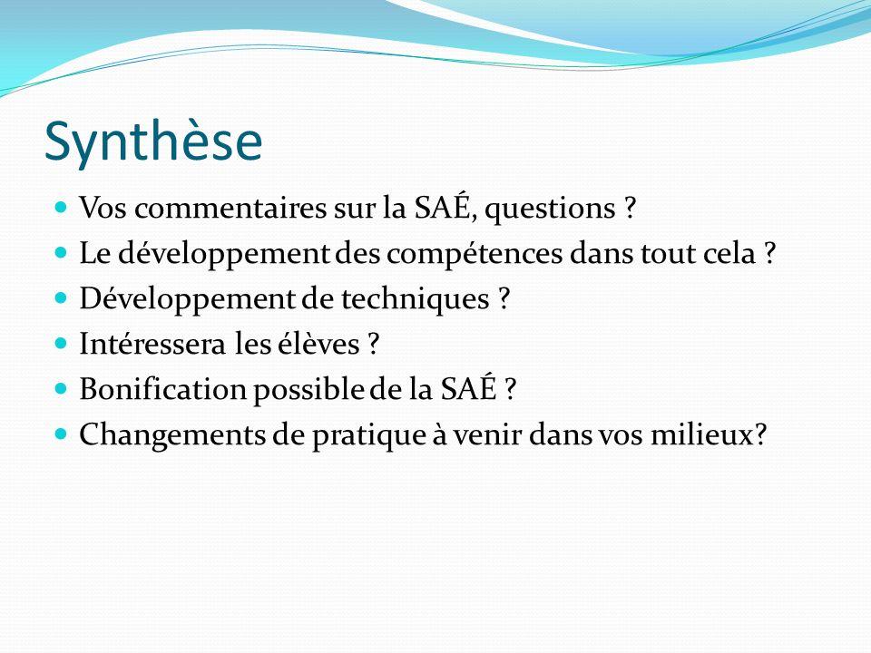 Synthèse Vos commentaires sur la SAÉ, questions .Le développement des compétences dans tout cela .
