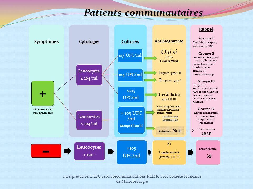 Interprétation ECBU selon recommandations REMIC 2010 Société Française de Microbiologie CulturesCytologieSymptômes + Leucocytes 104/ml 103 UFC/ml 104