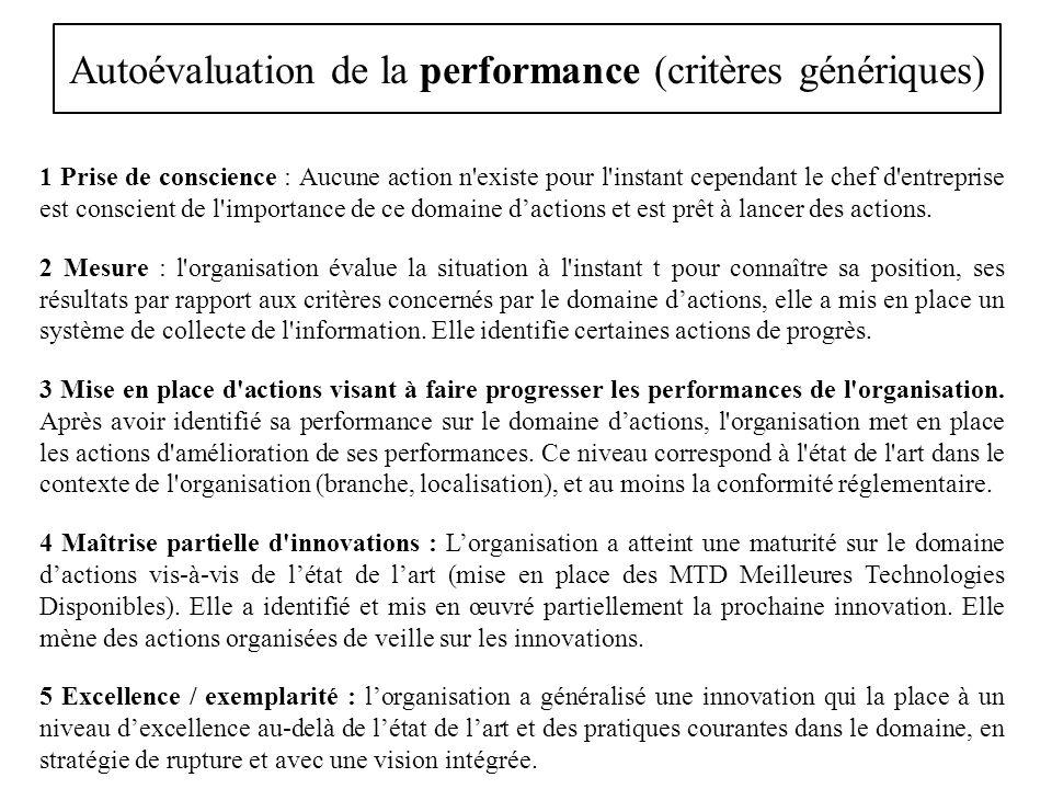 Autoévaluation de la performance (critères génériques) 1 Prise de conscience : Aucune action n'existe pour l'instant cependant le chef d'entreprise es