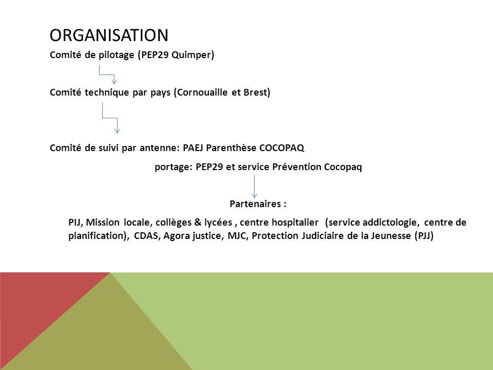 ORGANISATION Comité de pilotage (PEP29 Quimper) Comité technique par pays (Cornouaille et Brest) Comité de suivi par antenne: PAEJ Parenthèse COCOPAQ