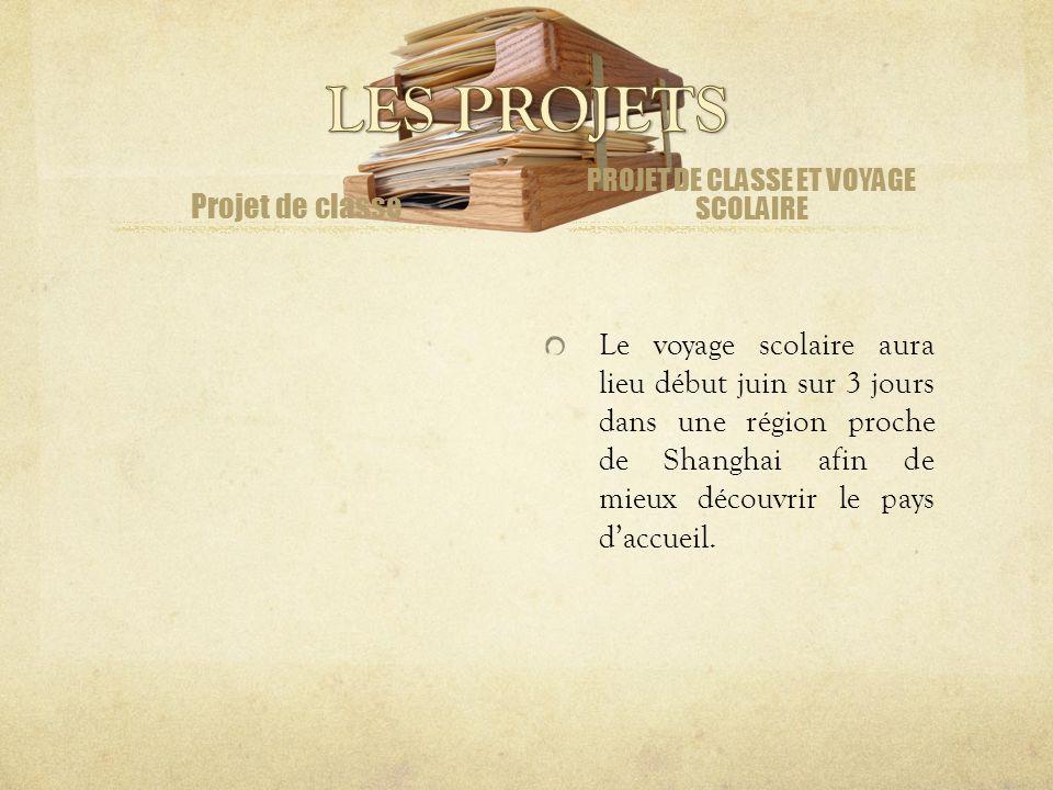 Adresse : http://blog.lfshanghai.com/cm2bil Utilisation : Devoirs en français Activités de classe Commentaires des élèves …