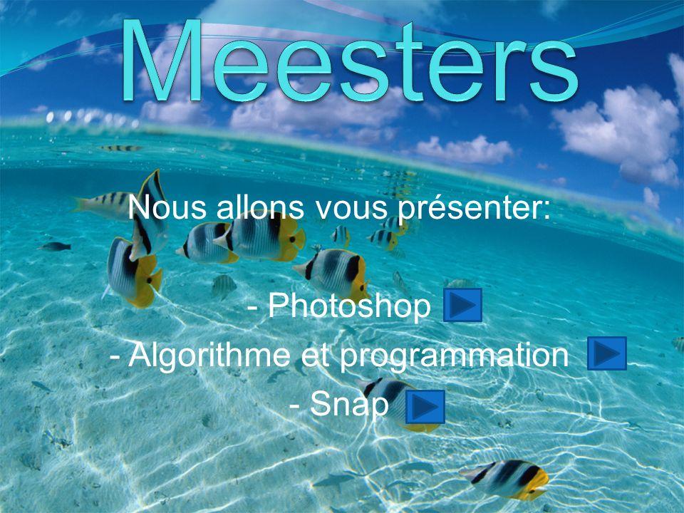 Nous allons vous présenter: - Photoshop - Algorithme et programmation - Snap