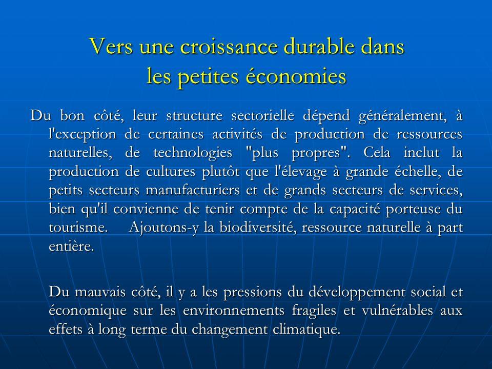 Vers une croissance durable dans les petites économies Du bon côté, leur structure sectorielle dépend généralement, à l exception de certaines activités de production de ressources naturelles, de technologies plus propres .