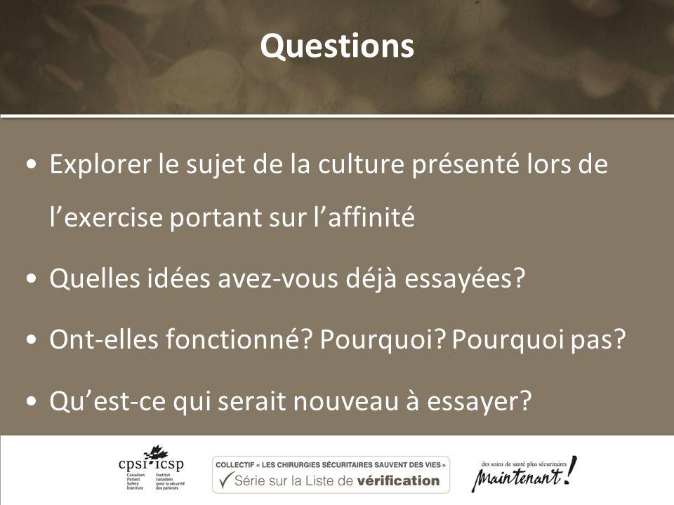 Questions Explorer le sujet de la culture présenté lors de lexercise portant sur laffinité Quelles idées avez-vous déjà essayées? Ont-elles fonctionné