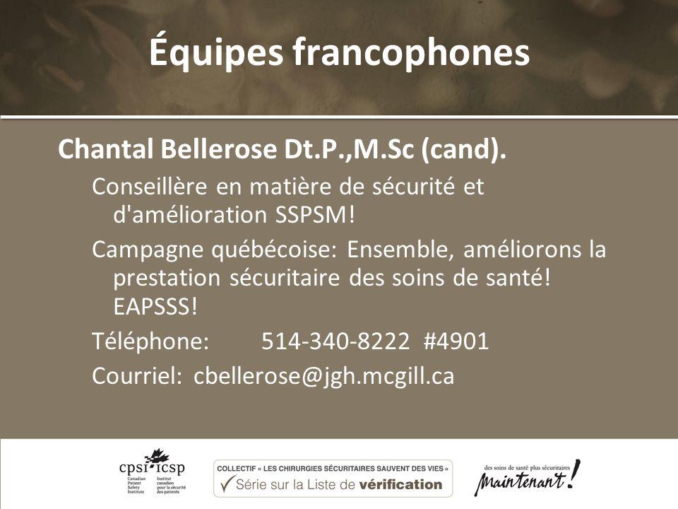 Équipes francophones Chantal Bellerose Dt.P.,M.Sc (cand). Conseillère en matière de sécurité et d'amélioration SSPSM! Campagne québécoise: Ensemble, a