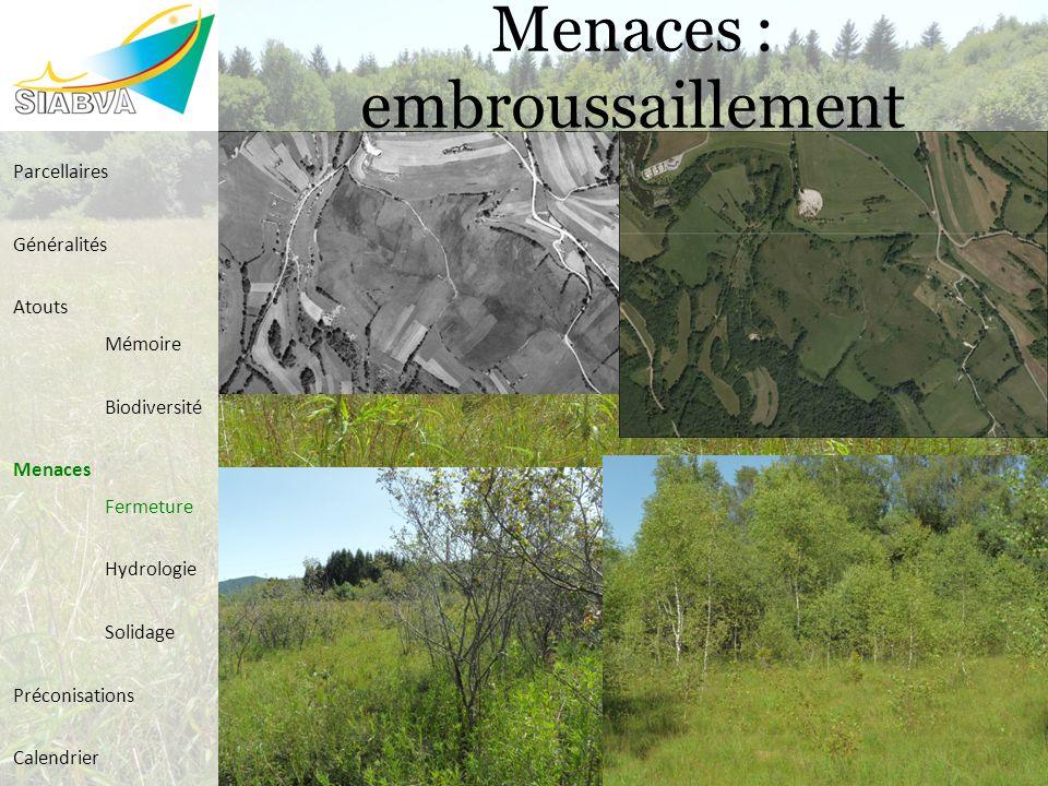 Menaces : embroussaillement Parcellaires Généralités Atouts Mémoire Biodiversité Menaces Fermeture Hydrologie Solidage Préconisations Calendrier