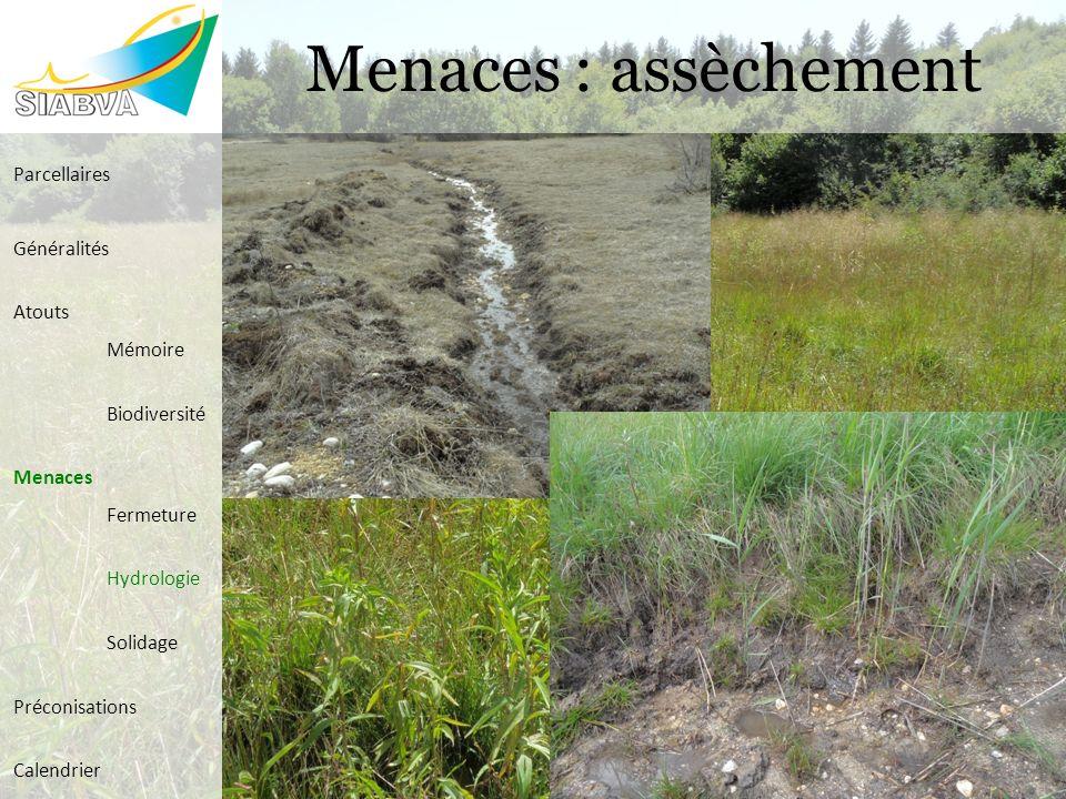 Menaces : assèchement Parcellaires Généralités Atouts Mémoire Biodiversité Menaces Fermeture Hydrologie Solidage Préconisations Calendrier