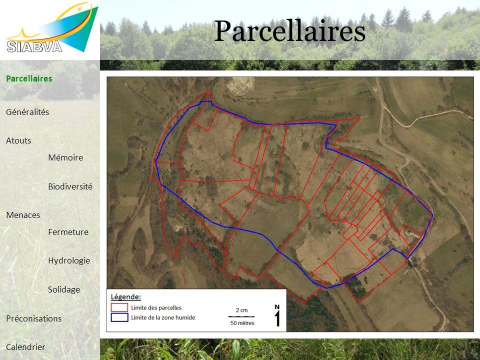 Parcellaires Généralités Atouts Mémoire Biodiversité Menaces Fermeture Hydrologie Solidage Préconisations Calendrier