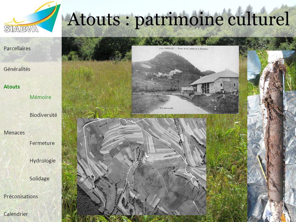 Atouts : patrimoine culturel Parcellaires Généralités Atouts Mémoire Biodiversité Menaces Fermeture Hydrologie Solidage Préconisations Calendrier