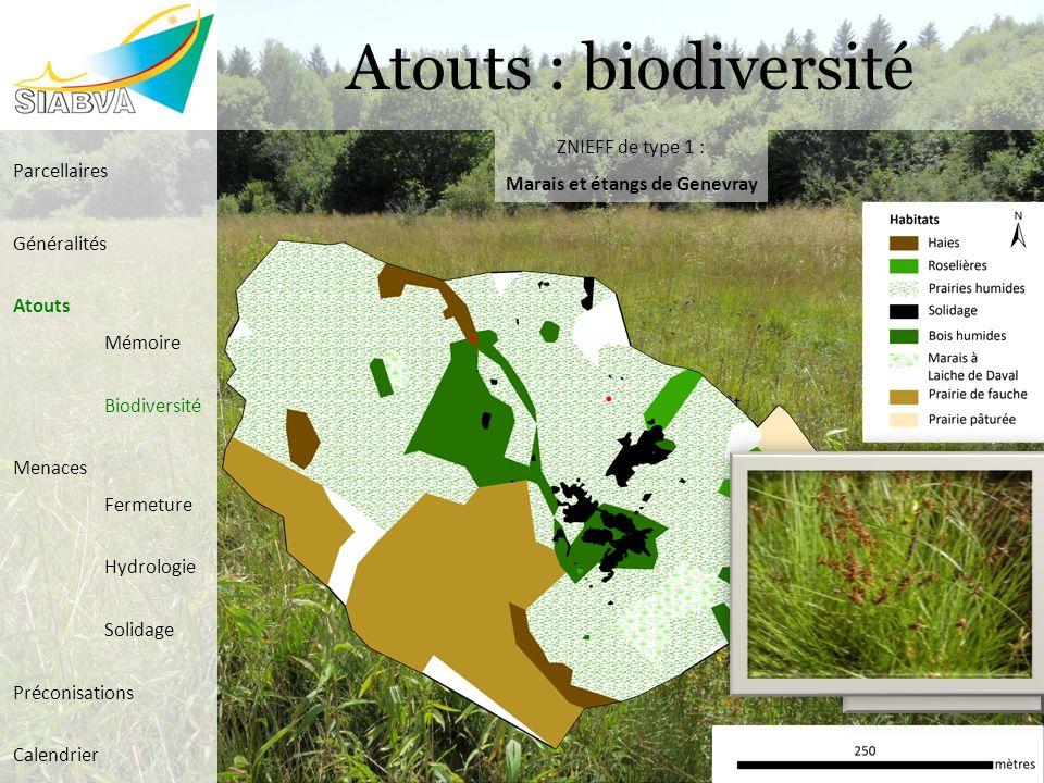 Atouts : biodiversité Carto habitats dintérêt ZNIEFF de type 1 : Marais et étangs de Genevray Parcellaires Généralités Atouts Mémoire Biodiversité Men