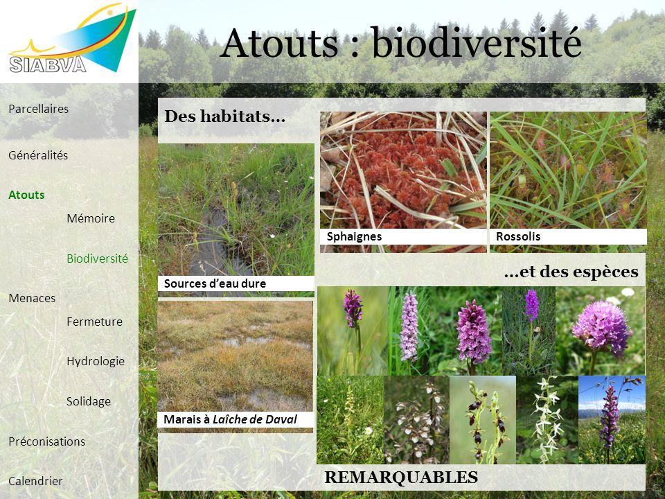 Atouts : biodiversité Des habitats… …et des espèces REMARQUABLES Sources deau dure Marais à Laîche de Daval RossolisSphaignes Parcellaires Généralités
