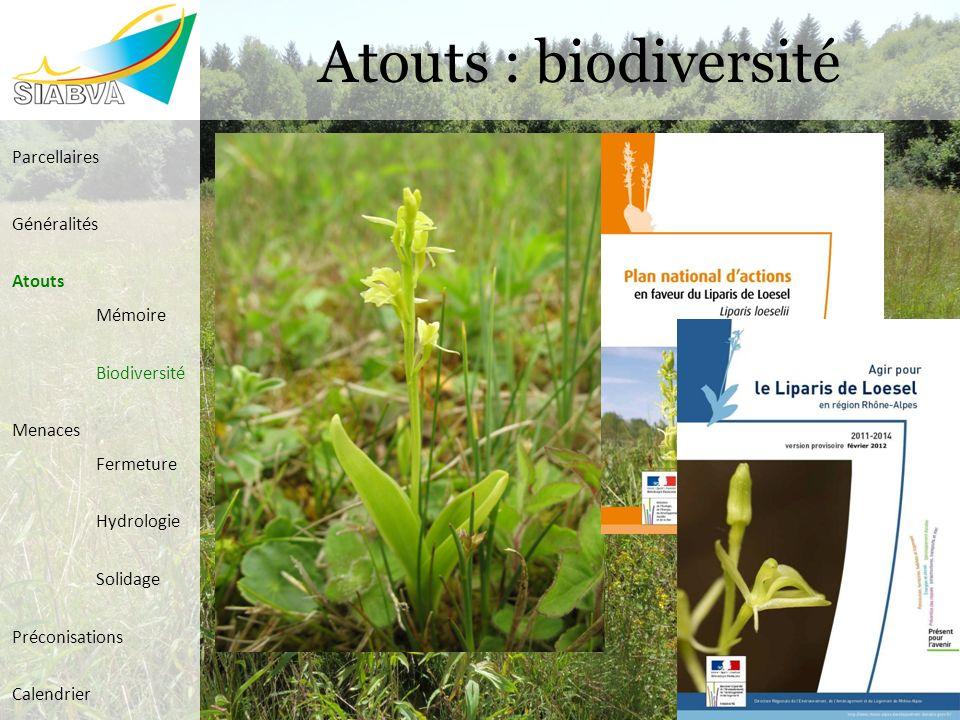 Atouts : biodiversité Parcellaires Généralités Atouts Mémoire Biodiversité Menaces Fermeture Hydrologie Solidage Préconisations Calendrier