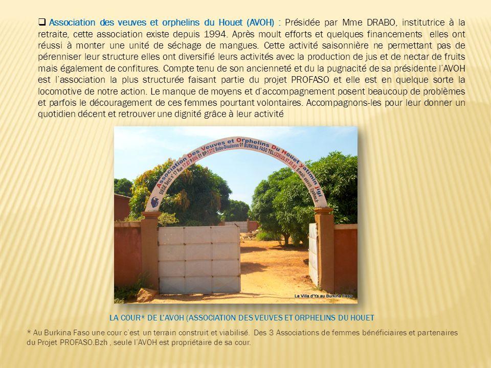 LA COUR* DE LAVOH (ASSOCIATION DES VEUVES ET ORPHELINS DU HOUET * Au Burkina Faso une cour cest un terrain construit et viabilisé. Des 3 Associations