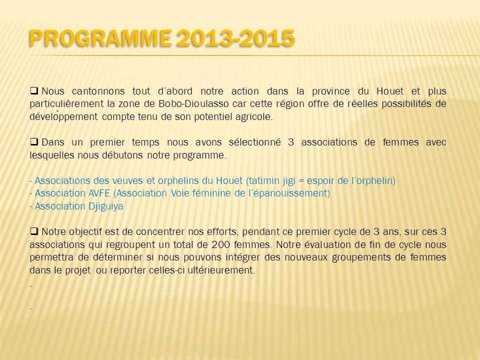 PROGRAMME 2013-2015 Nous cantonnons tout dabord notre action dans la province du Houet et plus particulièrement la zone de Bobo-Dioulasso car cette ré