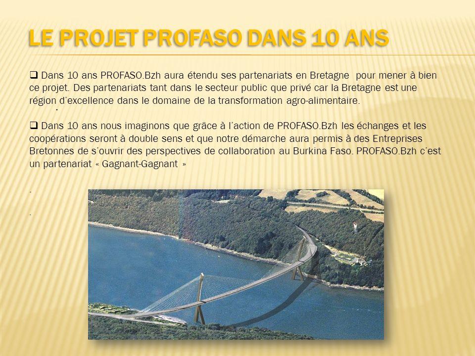 LE PROJET PROFASO DANS 10 ANS Dans 10 ans PROFASO.Bzh aura étendu ses partenariats en Bretagne pour mener à bien ce projet. Des partenariats tant dans