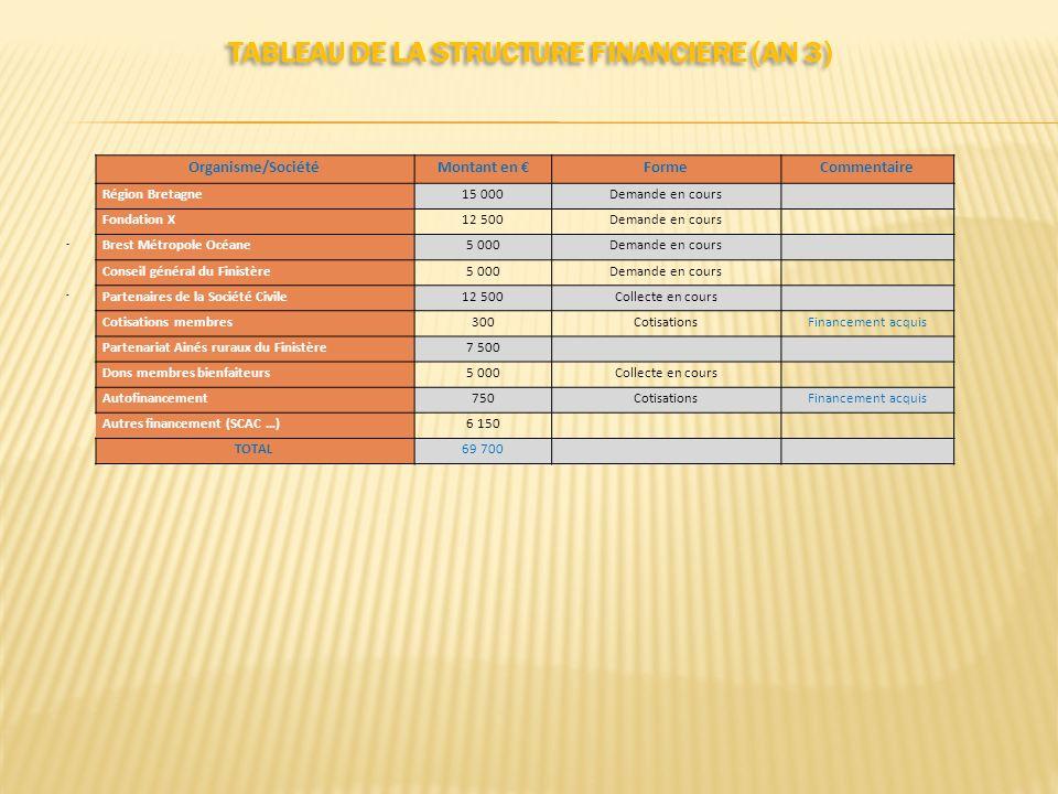 TABLEAU DE LA STRUCTURE FINANCIERE (AN 3)..... Organisme/SociétéMontant en FormeCommentaire Région Bretagne15 000Demande en cours Fondation X12 500Dem