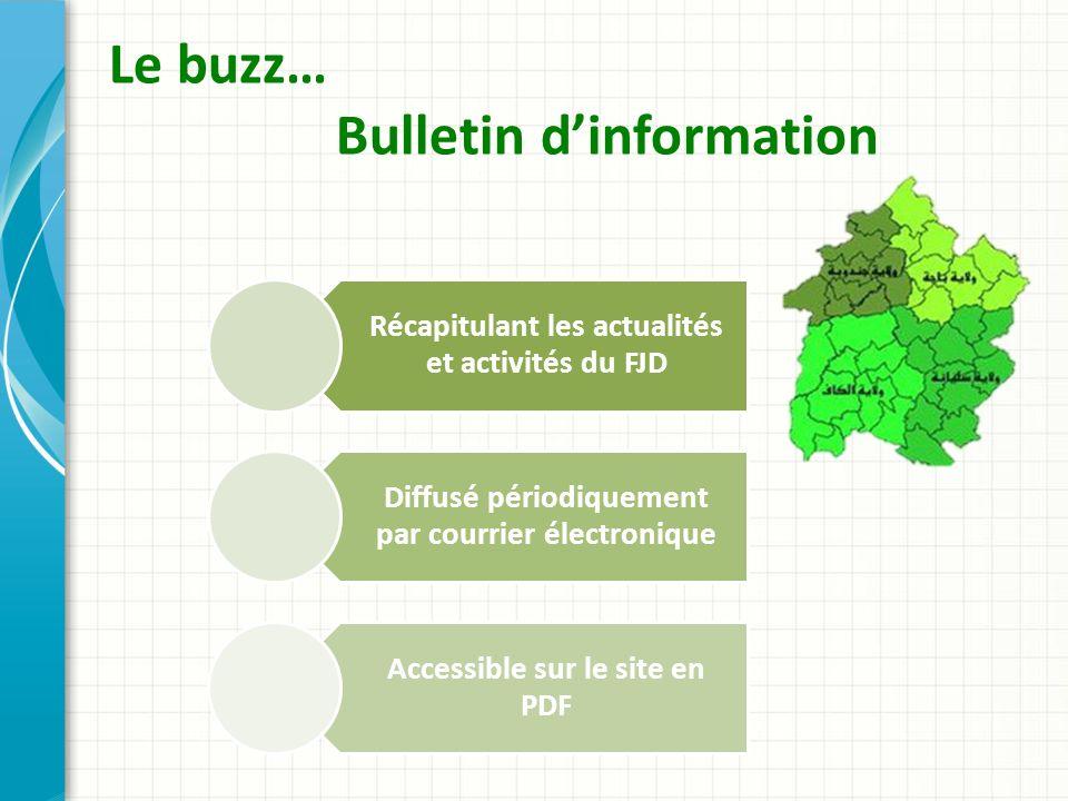 Le buzz… Bulletin dinformation Récapitulant les actualités et activités du FJD Diffusé périodiquement par courrier électronique Accessible sur le site en PDF