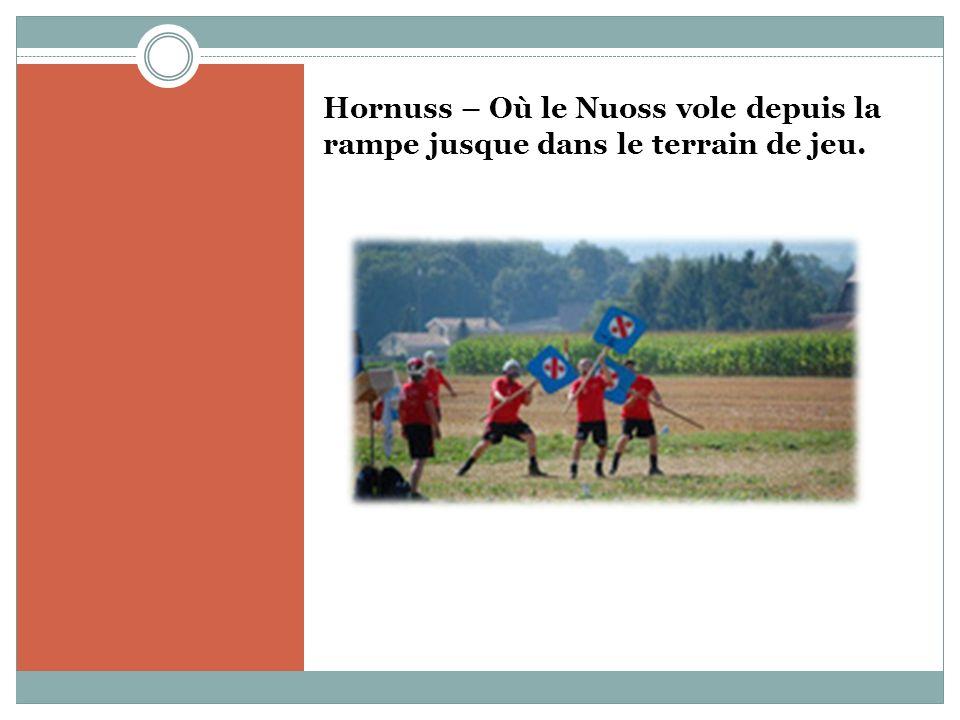 Hornuss – Où le Nuoss vole depuis la rampe jusque dans le terrain de jeu.
