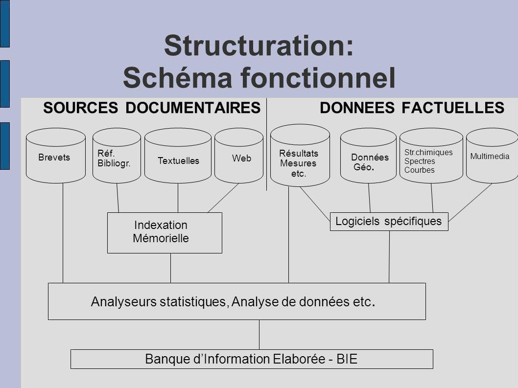 Structuration: Schéma fonctionnel SOURCES DOCUMENTAIRES DONNEES FACTUELLES Indexation Mémorielle Logiciels spécifiques Brevets Réf. Bibliogr. Textuell
