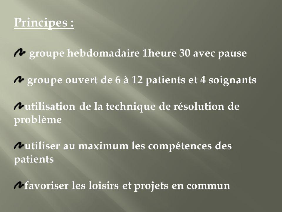 Principes : groupe hebdomadaire 1heure 30 avec pause groupe ouvert de 6 à 12 patients et 4 soignants utilisation de la technique de résolution de prob