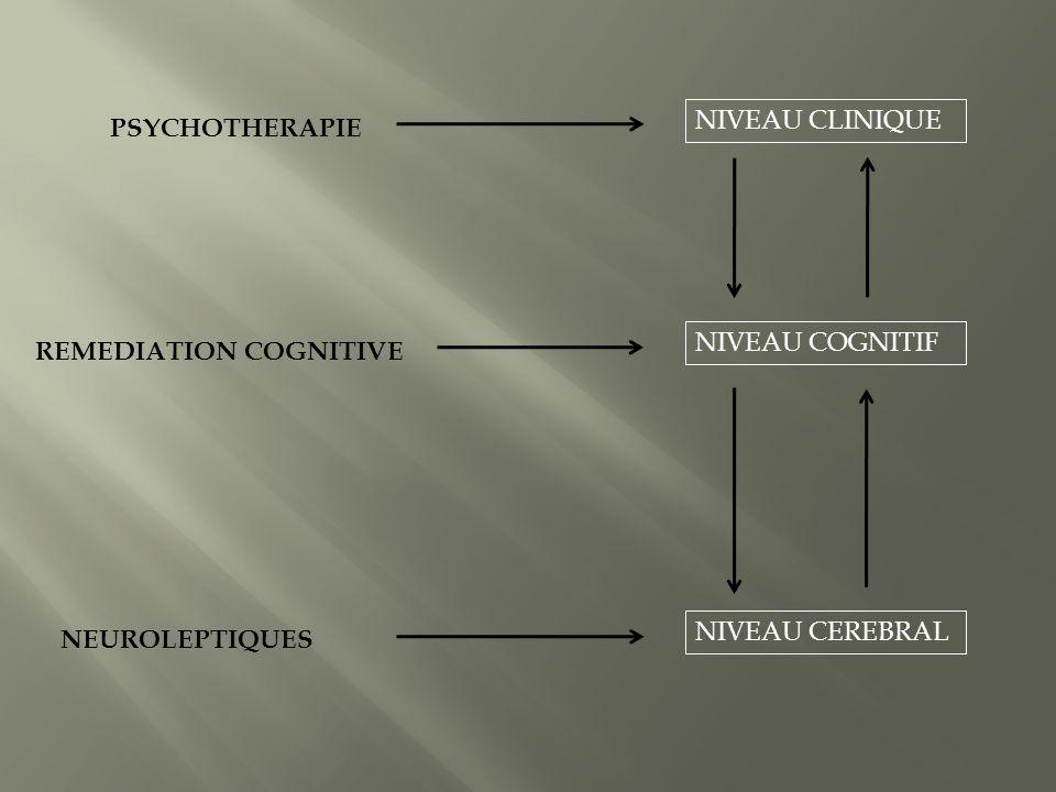 PSYCHOTHERAPIE NIVEAU CLINIQUE REMEDIATION COGNITIVE NIVEAU COGNITIF NEUROLEPTIQUES NIVEAU CEREBRAL