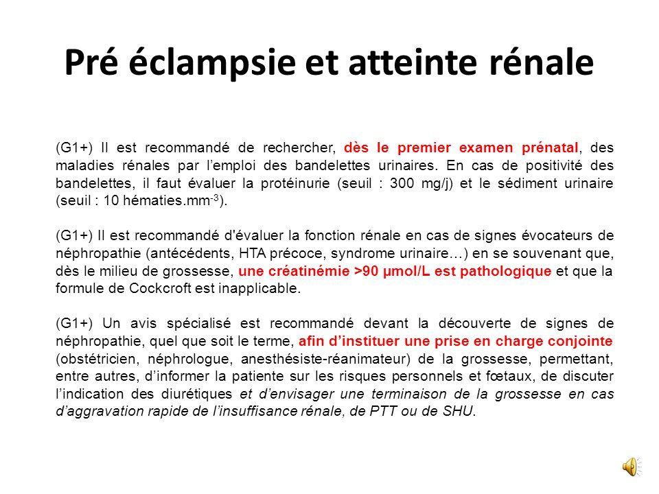 Eclampsie (G1+) En cas de troubles visuels atypiques ou persistants, il est recommandé deffectuer un fond dœil et une IRM, ou à défaut une TDM. (G1+)