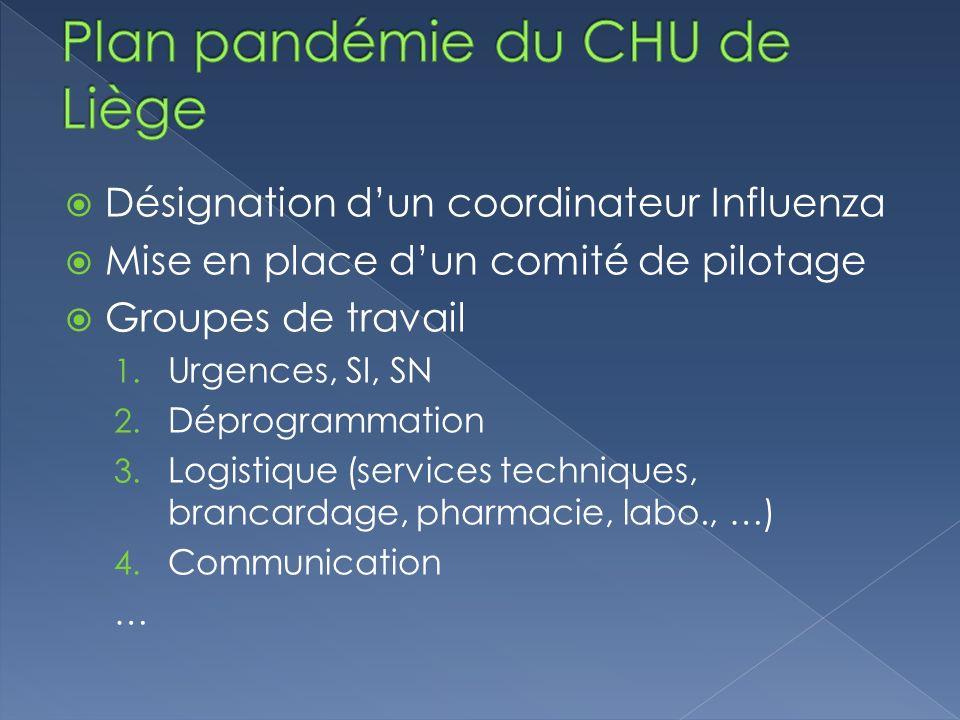 Désignation dun coordinateur Influenza Mise en place dun comité de pilotage Groupes de travail 1. Urgences, SI, SN 2. Déprogrammation 3. Logistique (s