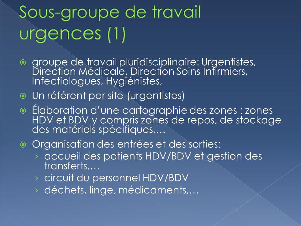groupe de travail pluridisciplinaire: Urgentistes, Direction Médicale, Direction Soins Infirmiers, Infectiologues, Hygiénistes, Un référent par site (