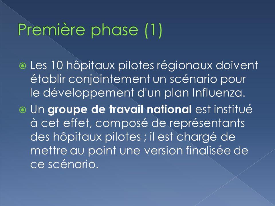Les 10 hôpitaux pilotes régionaux doivent établir conjointement un scénario pour le développement d un plan Influenza.