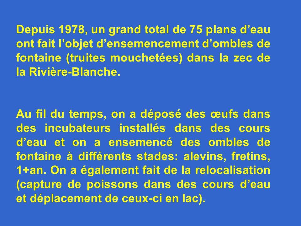 Depuis 1978, un grand total de 75 plans deau ont fait lobjet densemencement dombles de fontaine (truites mouchetées) dans la zec de la Rivière-Blanche.