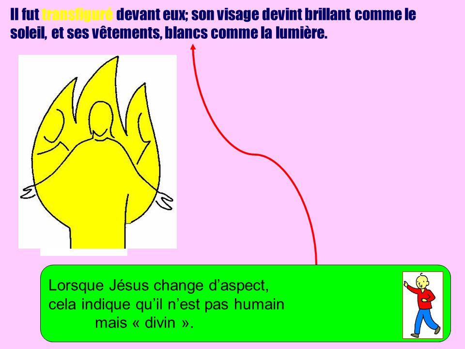 Il fut transfiguré devant eux; son visage devint brillant comme le soleil, et ses vêtements, blancs comme la lumière. Lorsque Jésus change daspect, ce
