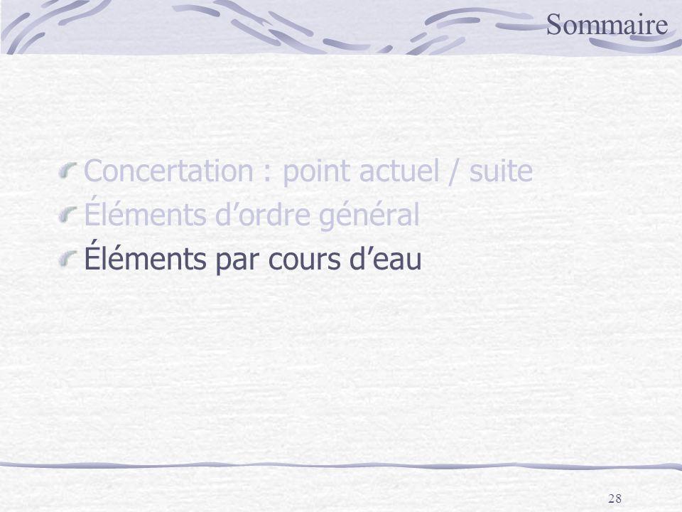 28 Sommaire Concertation : point actuel / suite Éléments dordre général Éléments par cours deau