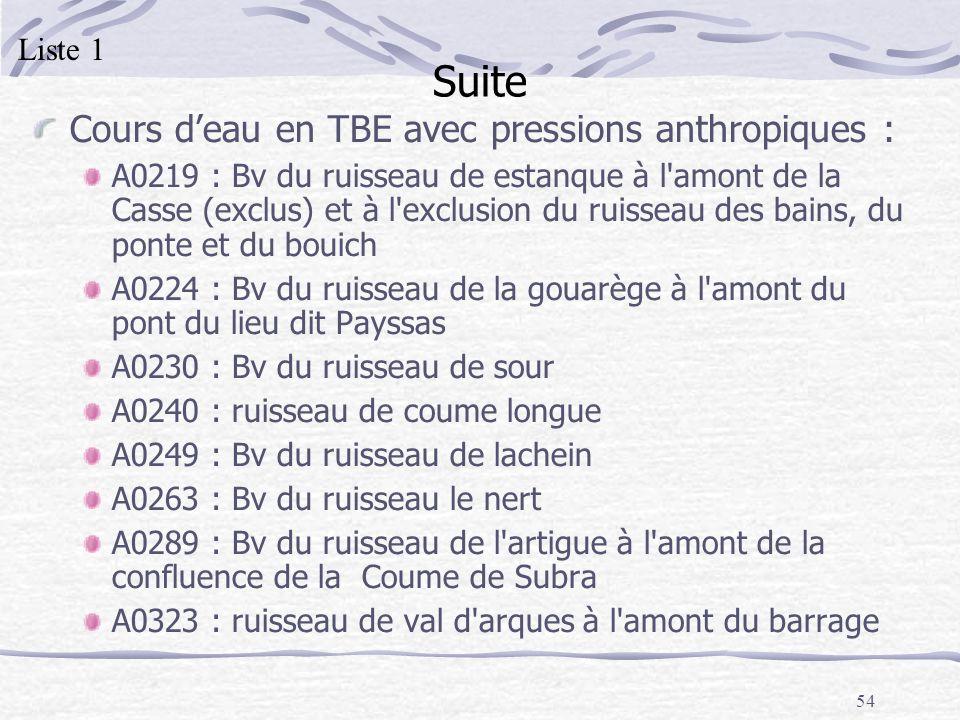 54 Suite Cours deau en TBE avec pressions anthropiques : A0219 : Bv du ruisseau de estanque à l'amont de la Casse (exclus) et à l'exclusion du ruissea