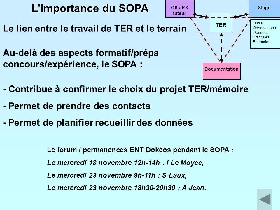 Le lien entre le travail de TER et le terrain Le forum / permanences ENT Dokéos pendant le SOPA : Le mercredi 18 novembre 12h-14h : I Le Moyec, Le mer