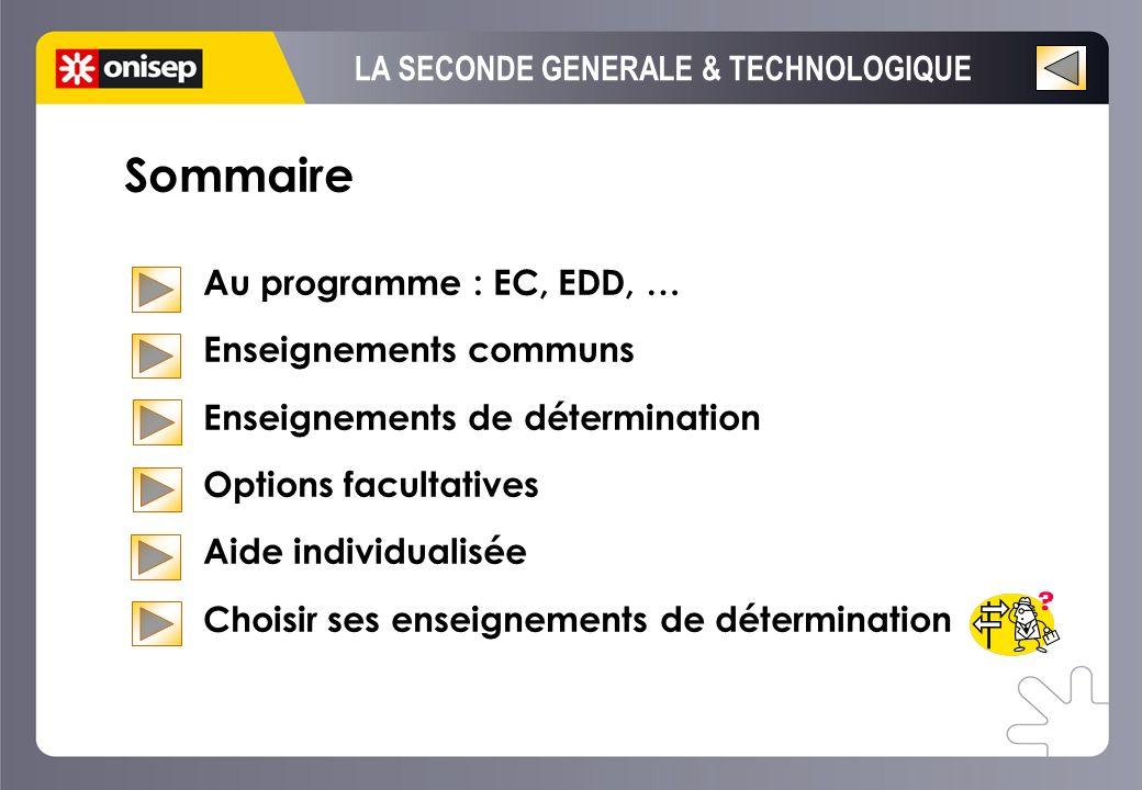 Sommaire Au programme : EC, EDD, … Enseignements communs Enseignements de détermination Options facultatives Aide individualisée Choisir ses enseignem
