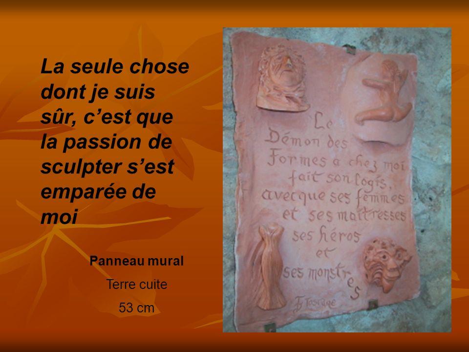 Panneau mural Terre cuite 53 cm La seule chose dont je suis sûr, cest que la passion de sculpter sest emparée de moi