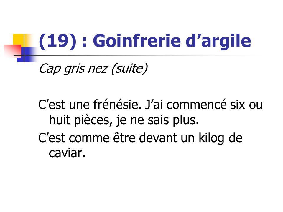 (19) : Goinfrerie dargile Cap gris nez (suite) Cest une frénésie. Jai commencé six ou huit pièces, je ne sais plus. Cest comme être devant un kilog de