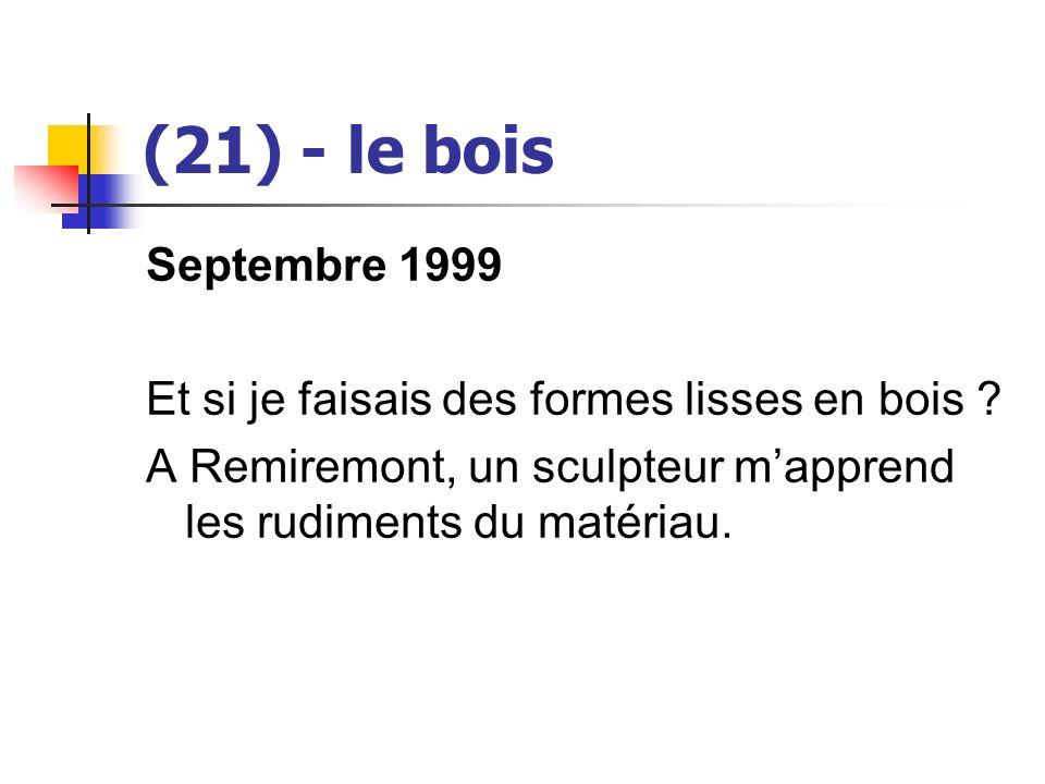 (21) - le bois Septembre 1999 Et si je faisais des formes lisses en bois ? A Remiremont, un sculpteur mapprend les rudiments du matériau.